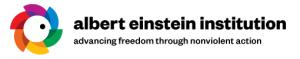 Institut Albert Einstein