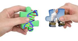 gènes-environnement
