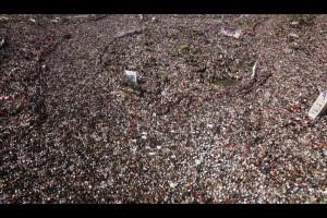 La victoire égyptienne, 18 février 2011. (Photo: inconnu)