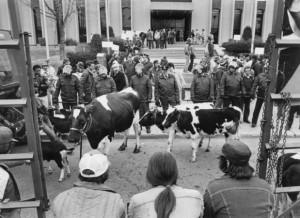 Manifestation contre l'expropriation de Mirabel, 1982. (Photo: George Bird)